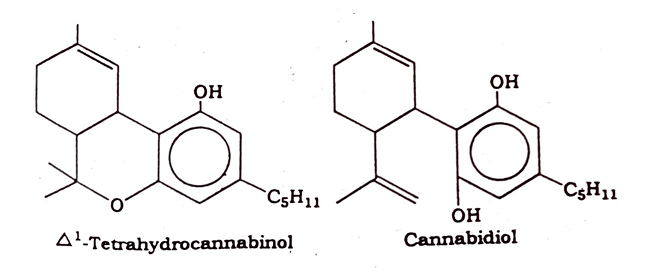 Cannabis Chemical constituents
