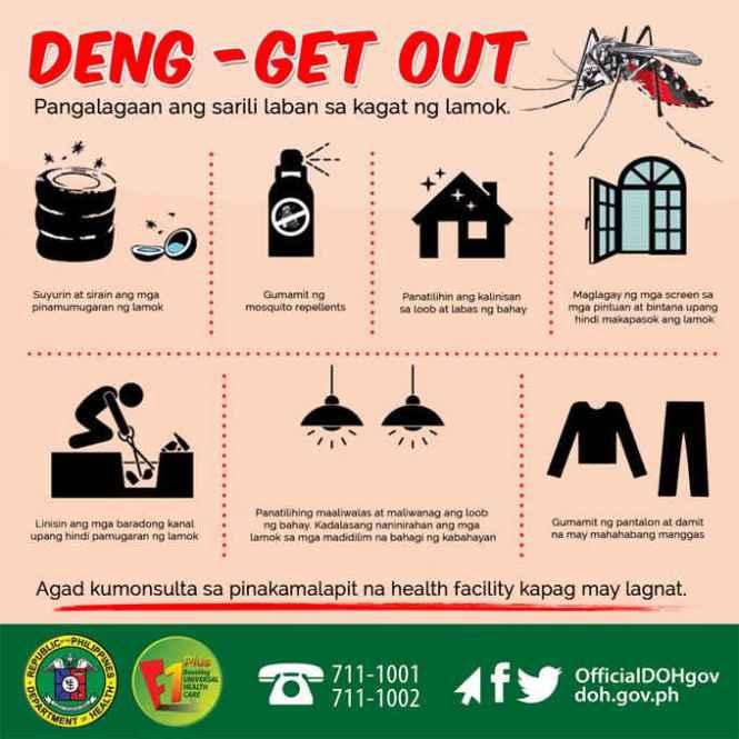 strains of dengue virus