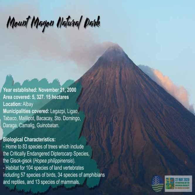 mount mayon natural park
