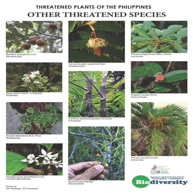 threatened plant species in the philippines