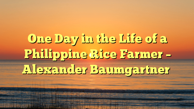 One Day in the Life of a Philippine Rice Farmer – Alexander Baumgartner
