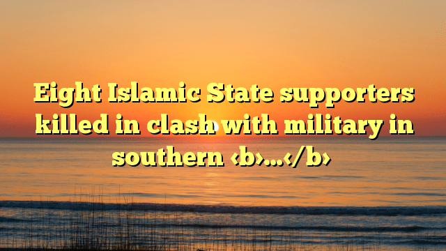 Eight Islamic State supporters killed in clash with military in southern …