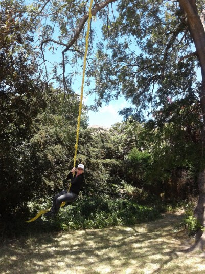 May on the rope swing