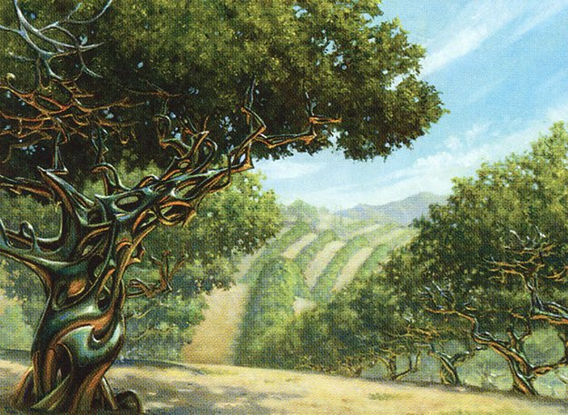 Exotic Orchard Magic the Gathering