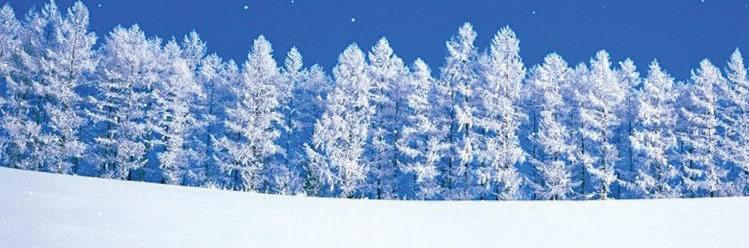 SnowyHorizon749x248
