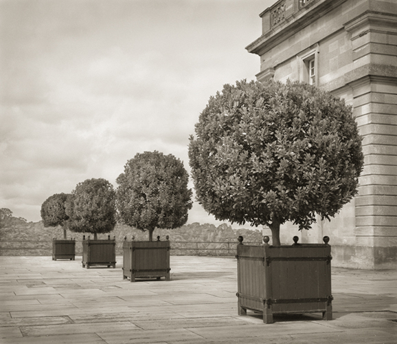 dow-standards-blenheim-palace