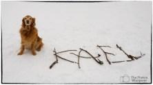 kael's avant garde snow sculpture