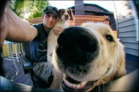 37-52 Selfie with the dogs