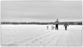 12-12 eva snowshoeing