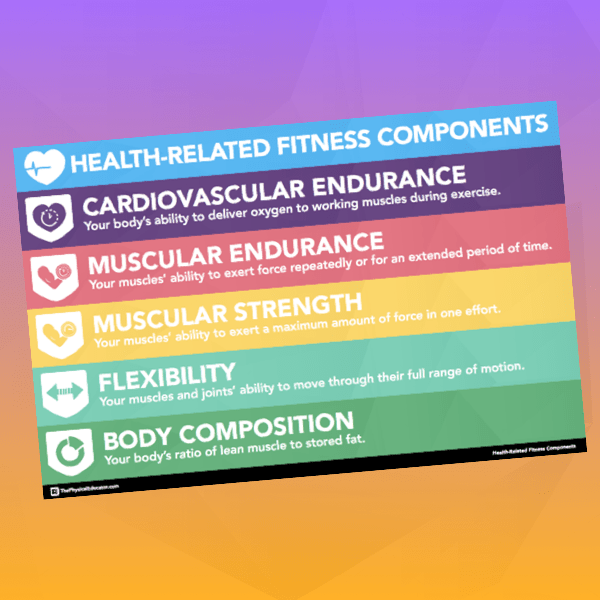 Health Related Fitness Components Thumb