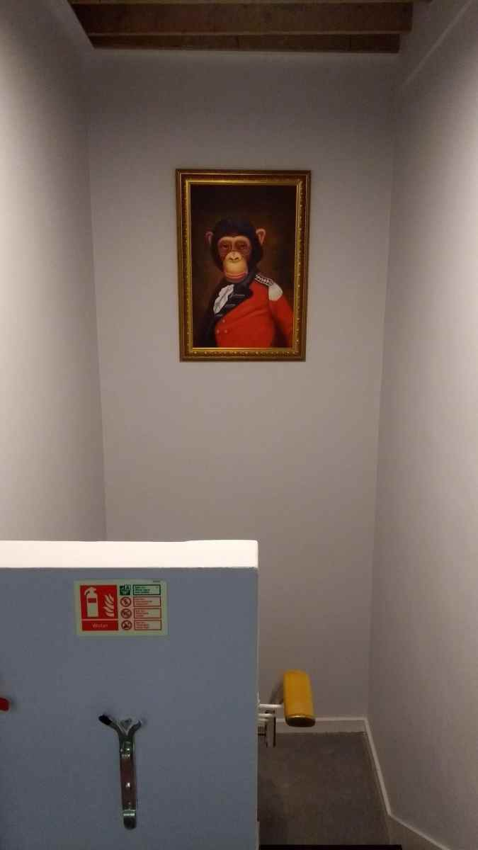 An oil painting portrait of a monkey in a red suit hung in a stairwell in Brighton
