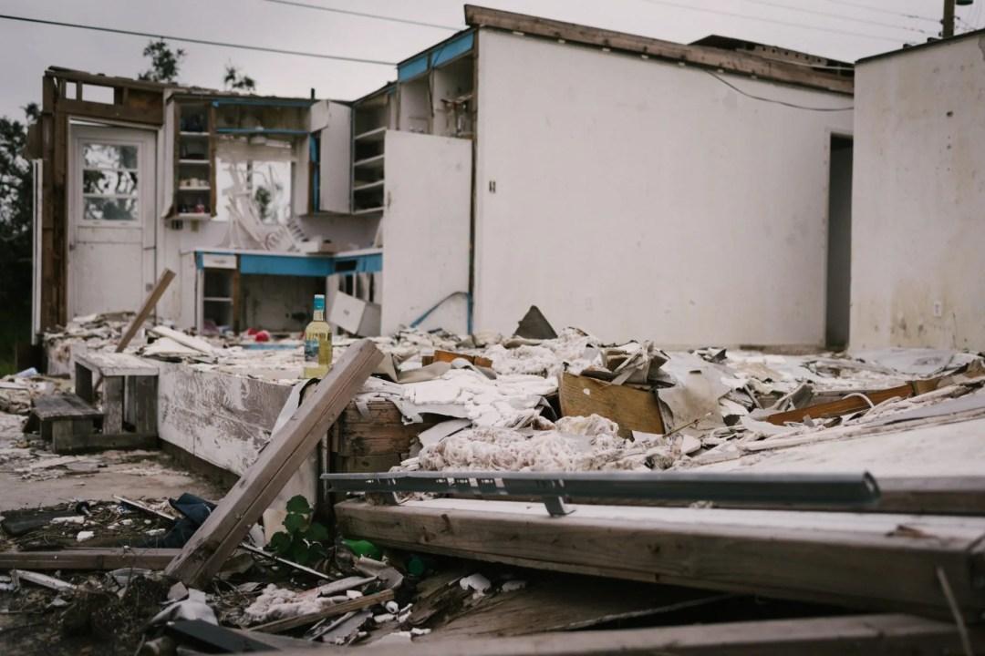 Peace Amongst Destruction