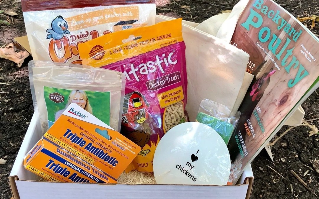 Henny & Roo Review – Chicken Subscription Box