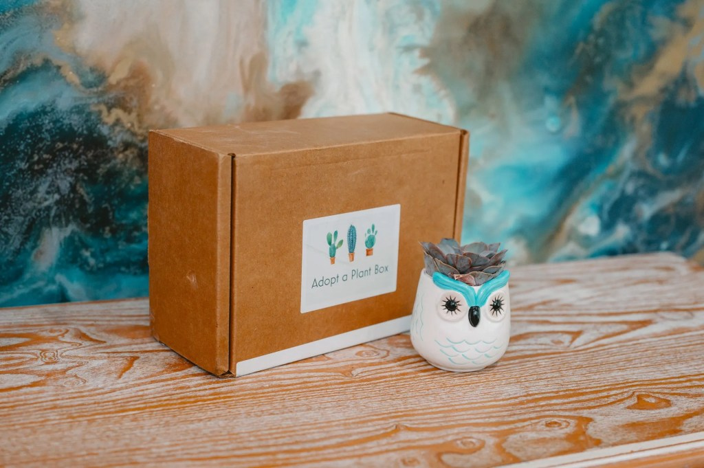 Adopt a Plant Box Review
