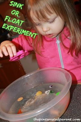 sink or float science experiments with water