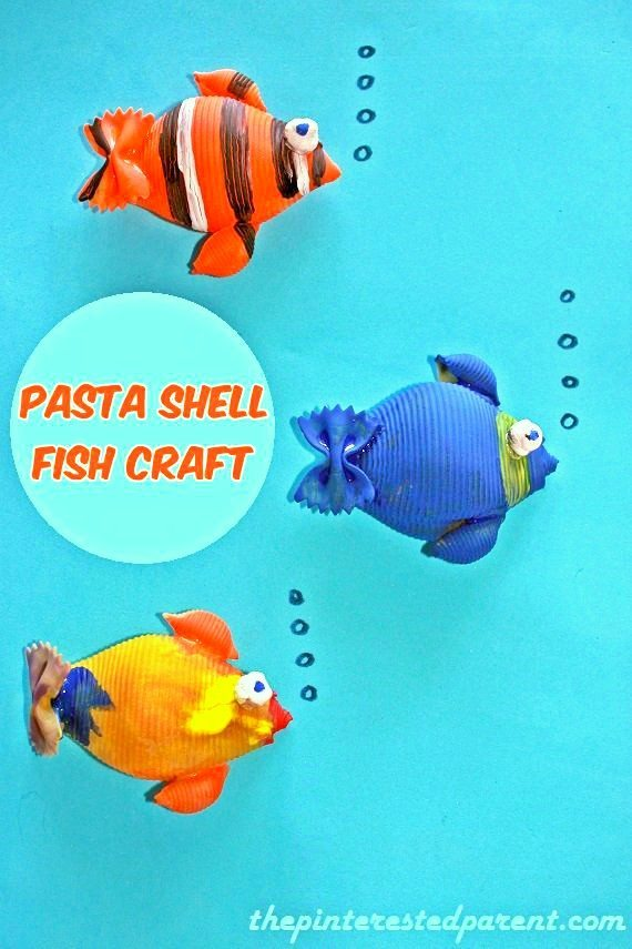 Pasta shell fish craft the pinterested parent for Fish art and craft