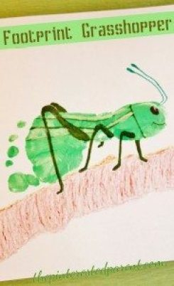 Footprint Grasshopper Craft