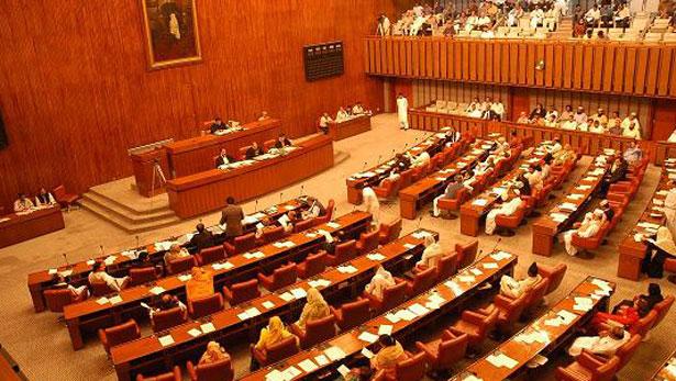 Senate Assembly