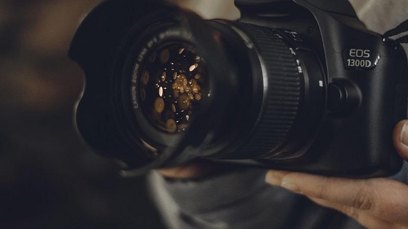 Best Beginner Camera for Wildlife Photogrraphy Canon Eos 1300D
