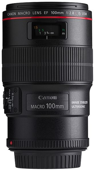 Best Macro Lens for Newborn Photography