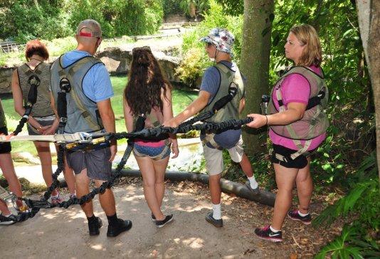 Wild Africa Trek Safety Harness