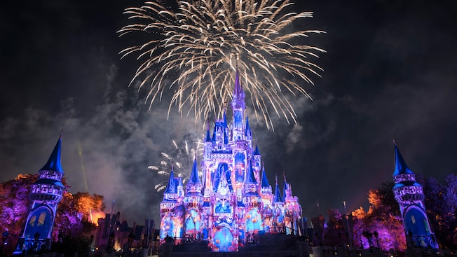 New WDW 1-Day 1-Park Ticket with FastPasses Available