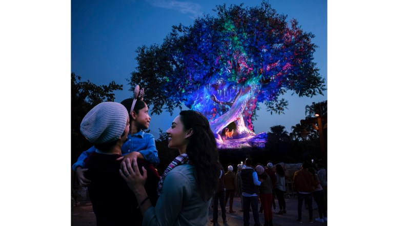 Sneak Peek Video of Holiday Décor at Disney's Animal Kingdom This Year