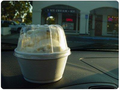 ice cream from Bucky's