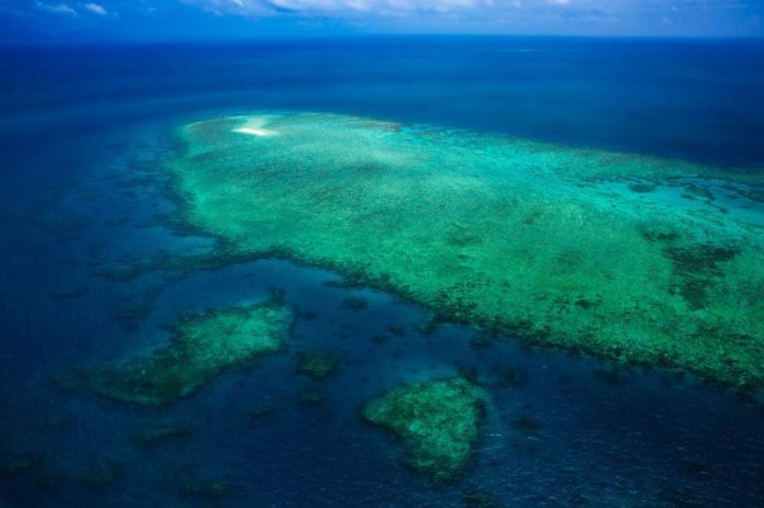 things to do in australia great barrier reef