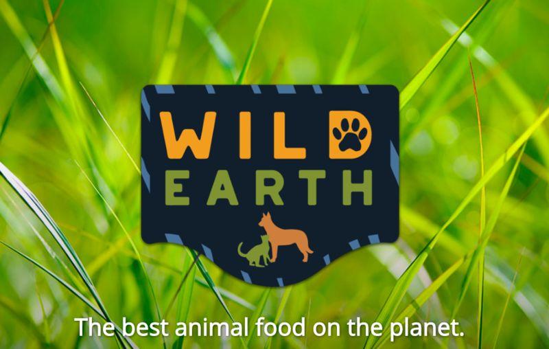 wild-earth.jpeg