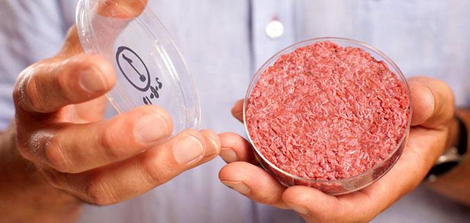 clean meat.jpg