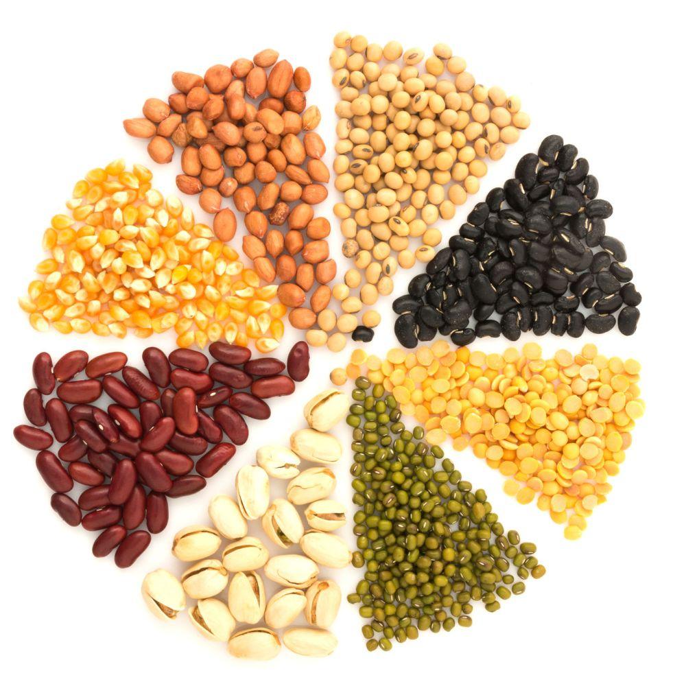 plant-based-protein-1.jpg