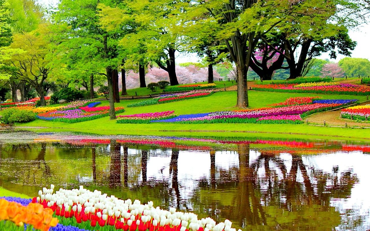 Good Worldwide Are Made A Huge Number Of Gardens Which Are Famous For Their  Looks And Different Types Of Horticultural Plants Used To Get The Required  Look.