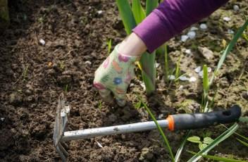 work-in-the-garden-2432111_1280