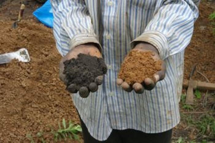 super fertile soil