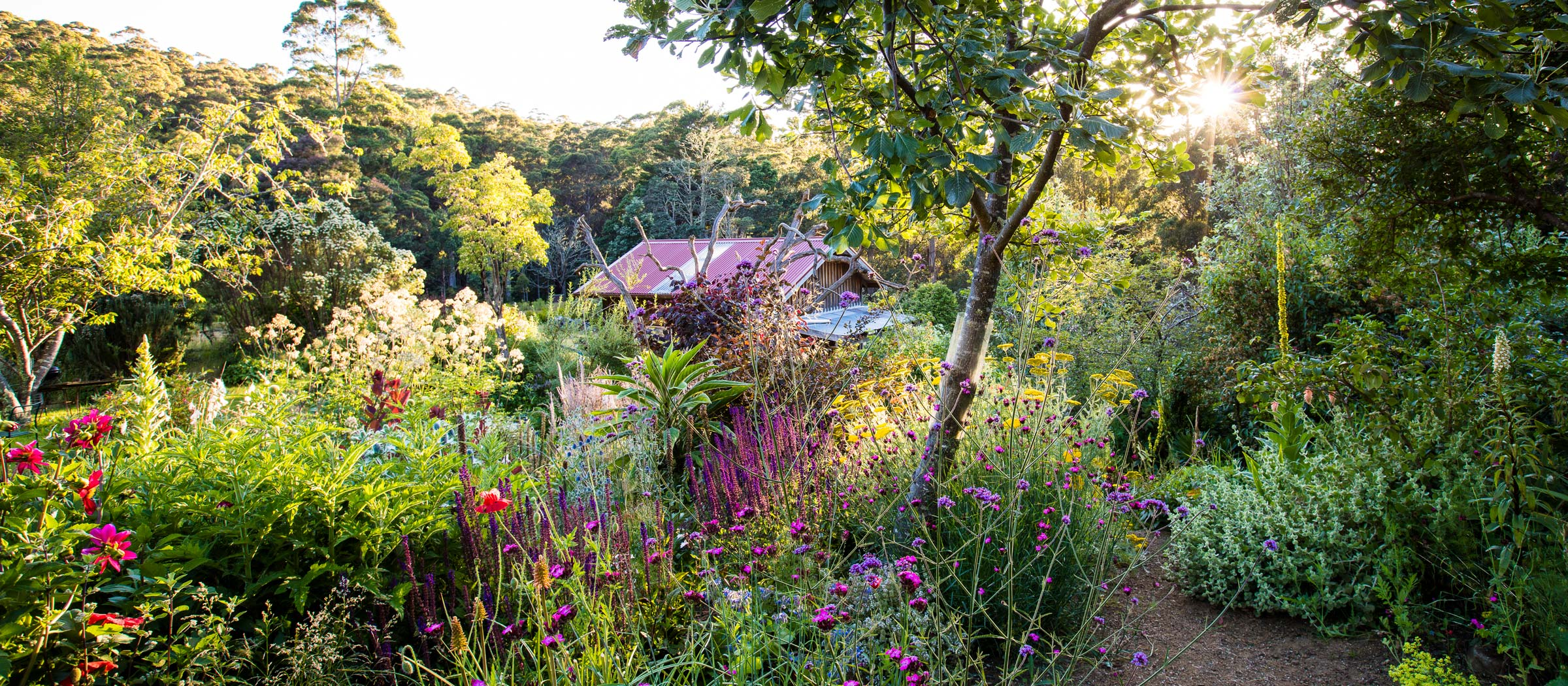Australian Dreamscapes The Art Of Gardening The Planthunter