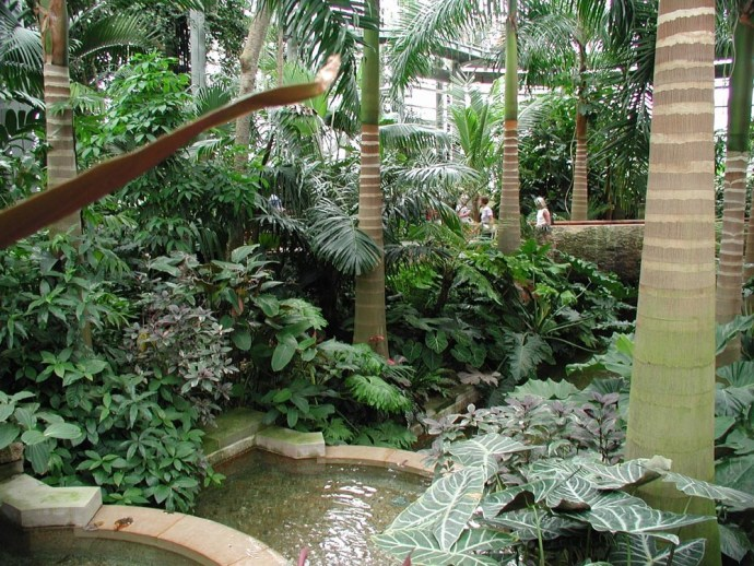 Med Garden at USBG