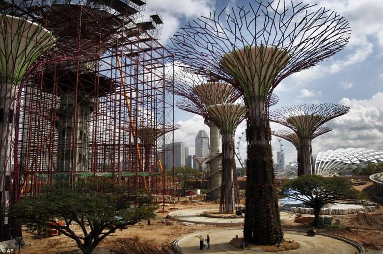 Singapore fake trees