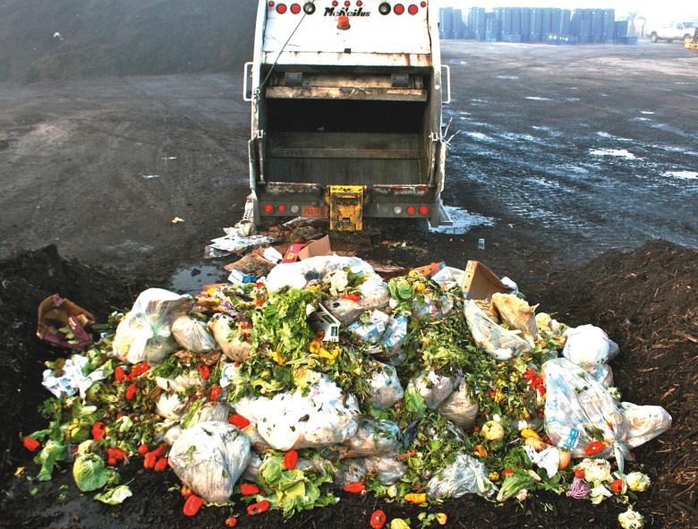 human food waste
