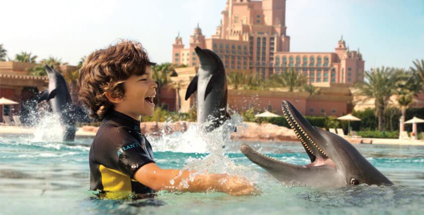 Dubai Dolphins