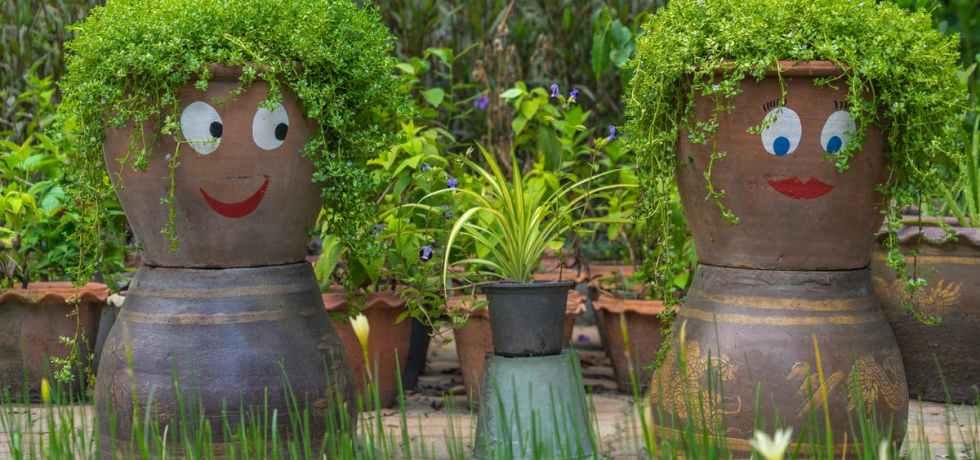 The Philosophy of Plants
