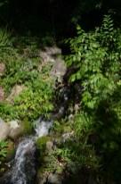 CW- Waterfall