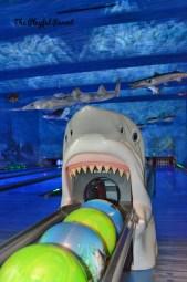 BPS- SHARK