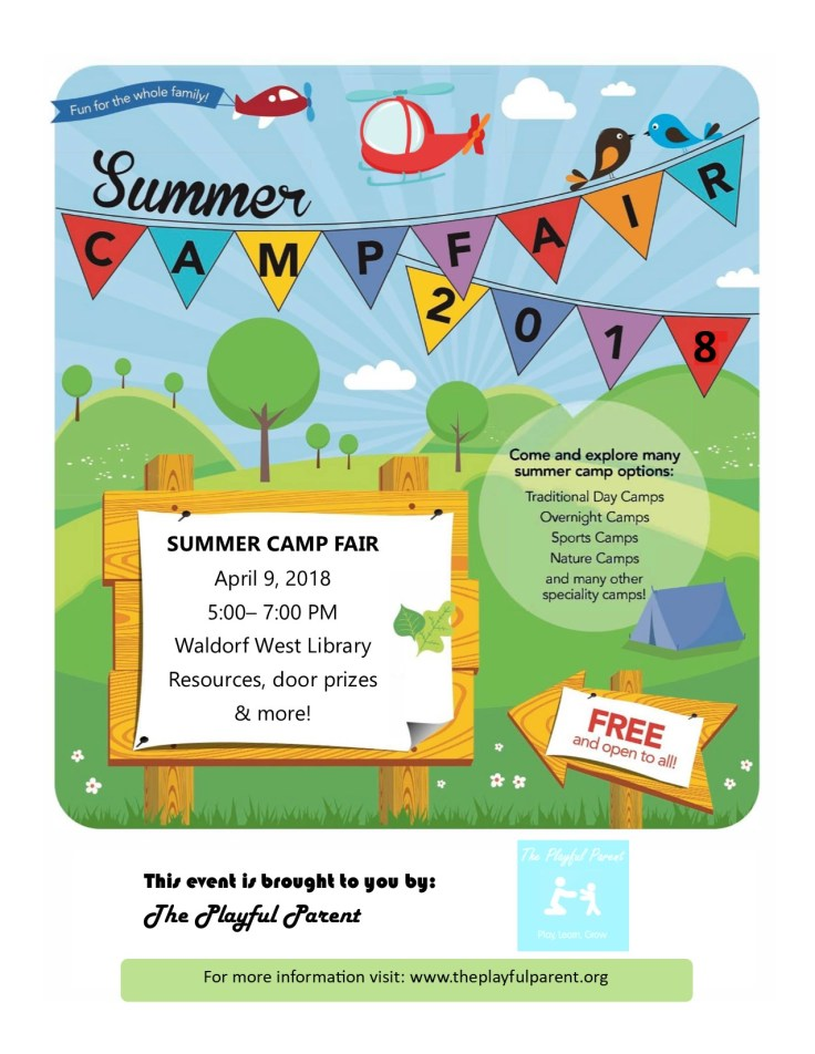 Summer Camp Fair Flyer- jpeg