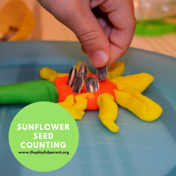 SUNFLOWER SEED COUNTING.jpg