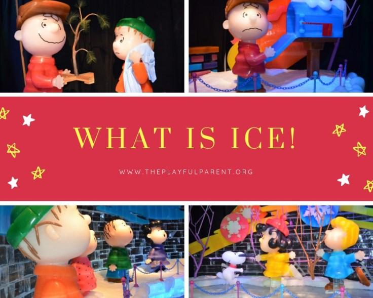 ICE- WHAT IS ICE.jpg