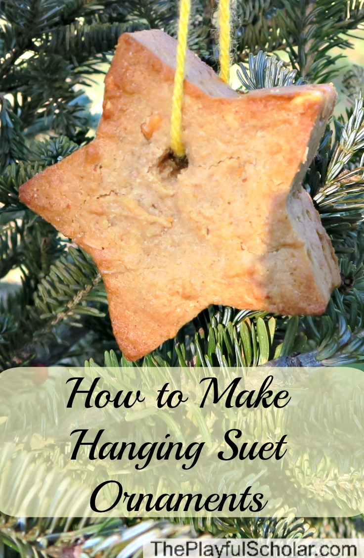 How to Make Hanging Suet Ornaments - These ornaments are great fun for kids to make and bake and hang from trees as edible gifts for their feathered friends.