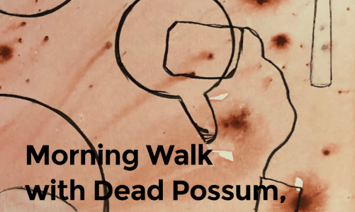 REVIEW: MORNING WALK WITH DEAD POSSUM, BREAKFAST AND PARALLEL UNIVERSE – BETH GORDON (ANIMAL HEART PRESS)