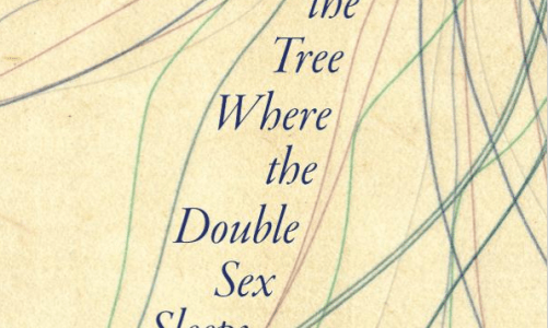 REVIEW: IN THE TREE WHERE THE DOUBLE SEX SLEEPS – ROBERT SHLEGEL (U OF IOWA PRESS)