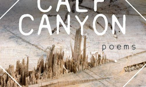 REVIEW: CALF CANYON – SARAH McCARTT-JACKSON (BRAIN MILL PRESS)